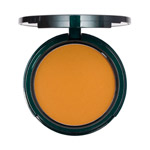 True Cosmetics Protective Mineral Foundation SPF 17 Compact Deep #2
